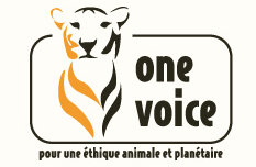 http://www.one-voice.fr/
