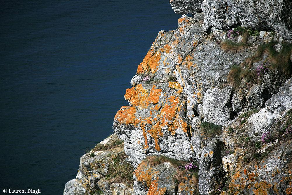 Site du Menhir - Presqu'île de Crozon © Laurent Dingli - Tous droits réservés