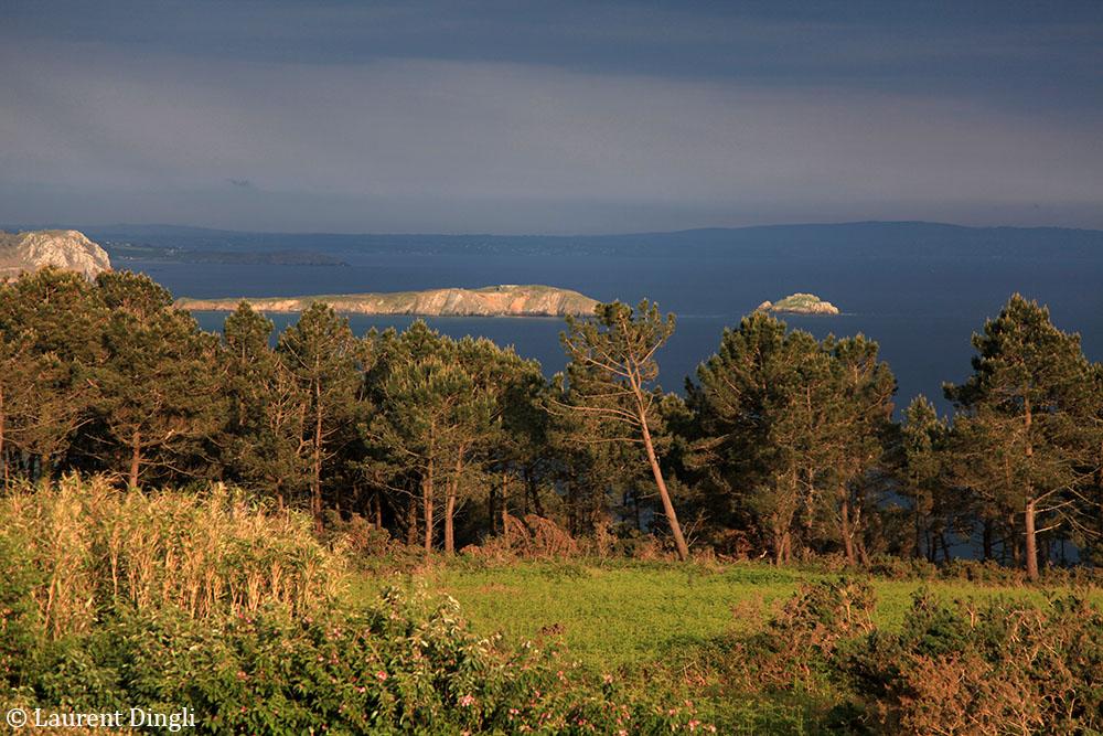 Bretagne 2014-209