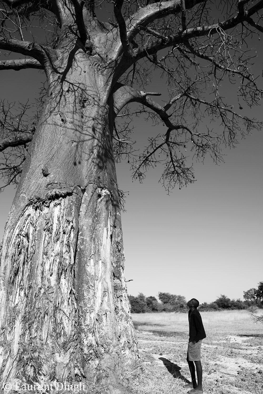 botswana_nb_keosabaka_2013_1 bis