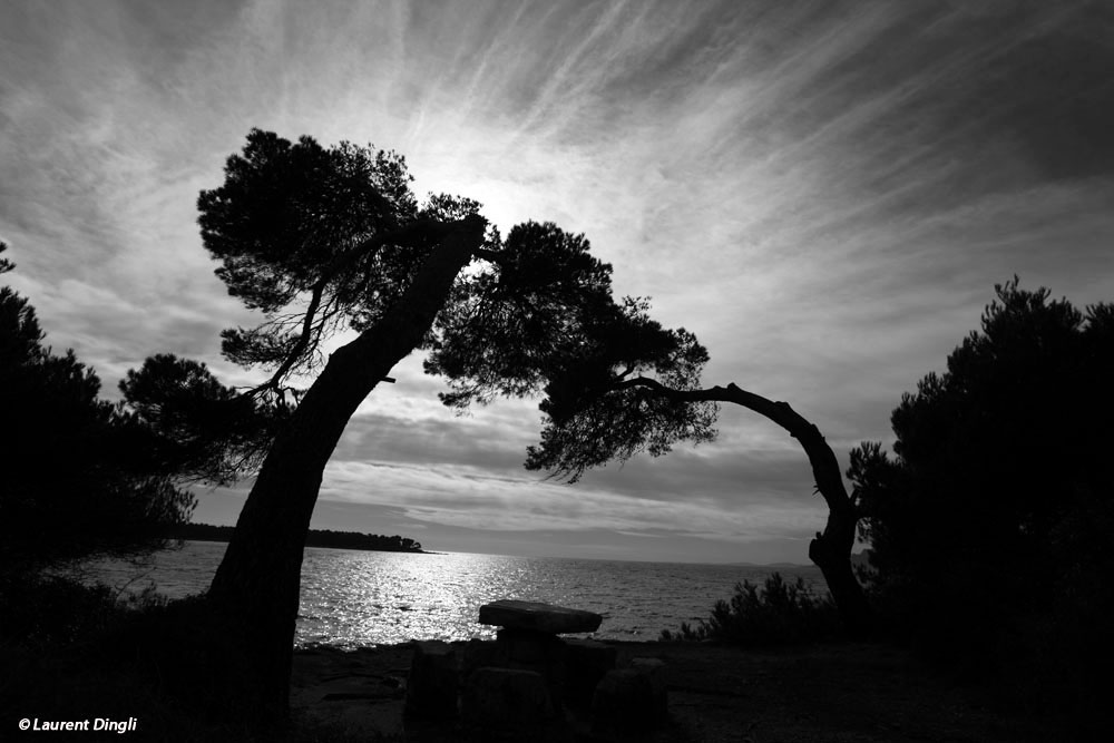 saint_honorat_nb_1