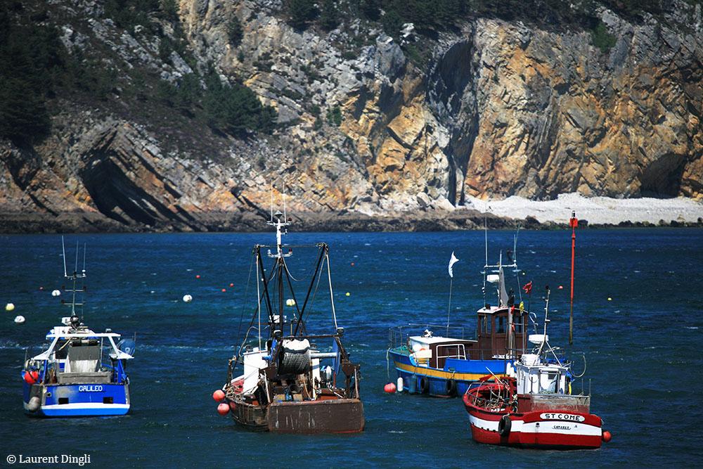 Port de Morgat © Laurent Dingli - Tous droits réservés