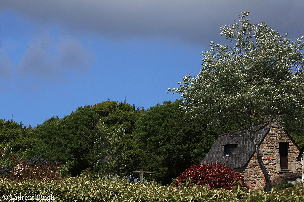 Bretagne 2013-50 copie